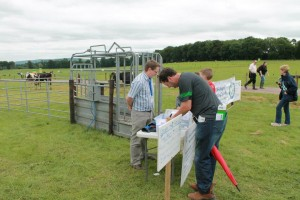 ICBF at Moorepark Open Day, July 3rd